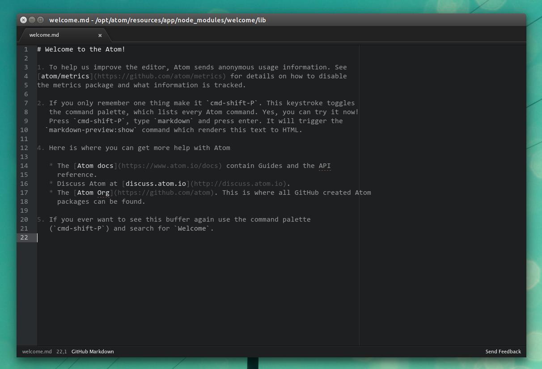 Aplikasi text editor yang banyak di gunakan oleh programmer